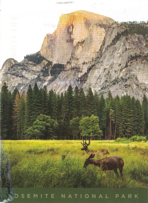 Postcard285a.jpeg